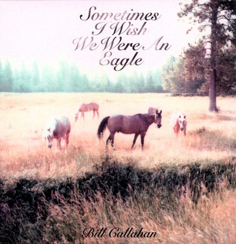 <b>Bill Callahan </b><br><i>Sometimes I Wish We Were An Eagle</i>