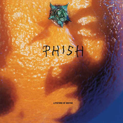 <b>Phish </b><br><i>A Picture Of Nectar</i>