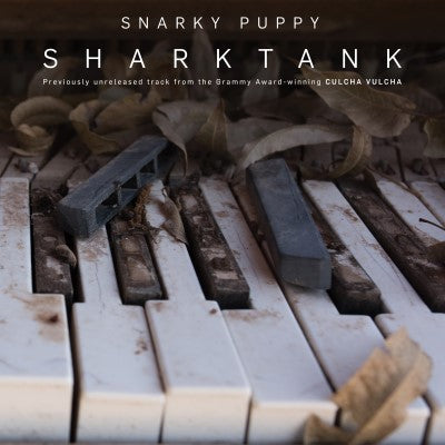 <b>Snarky Puppy </b><br><i>Sharktank</i>