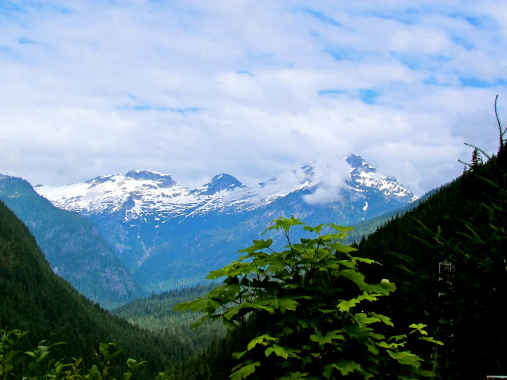 Insider's Guide to North Cascades National Park