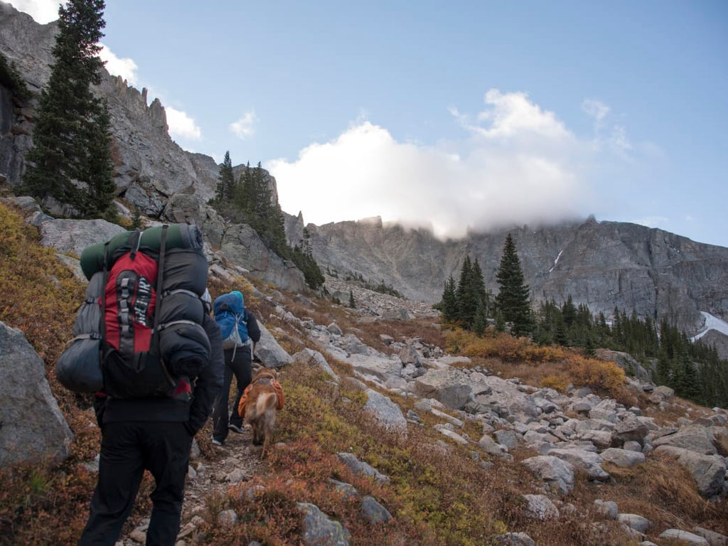 National Parks Too Crowded? Visit Nearby National Forests Instead