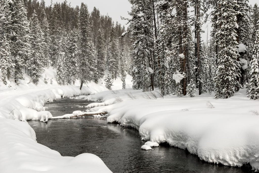 Why Winter Shouldn't Stop You from Visiting West Yellowstone