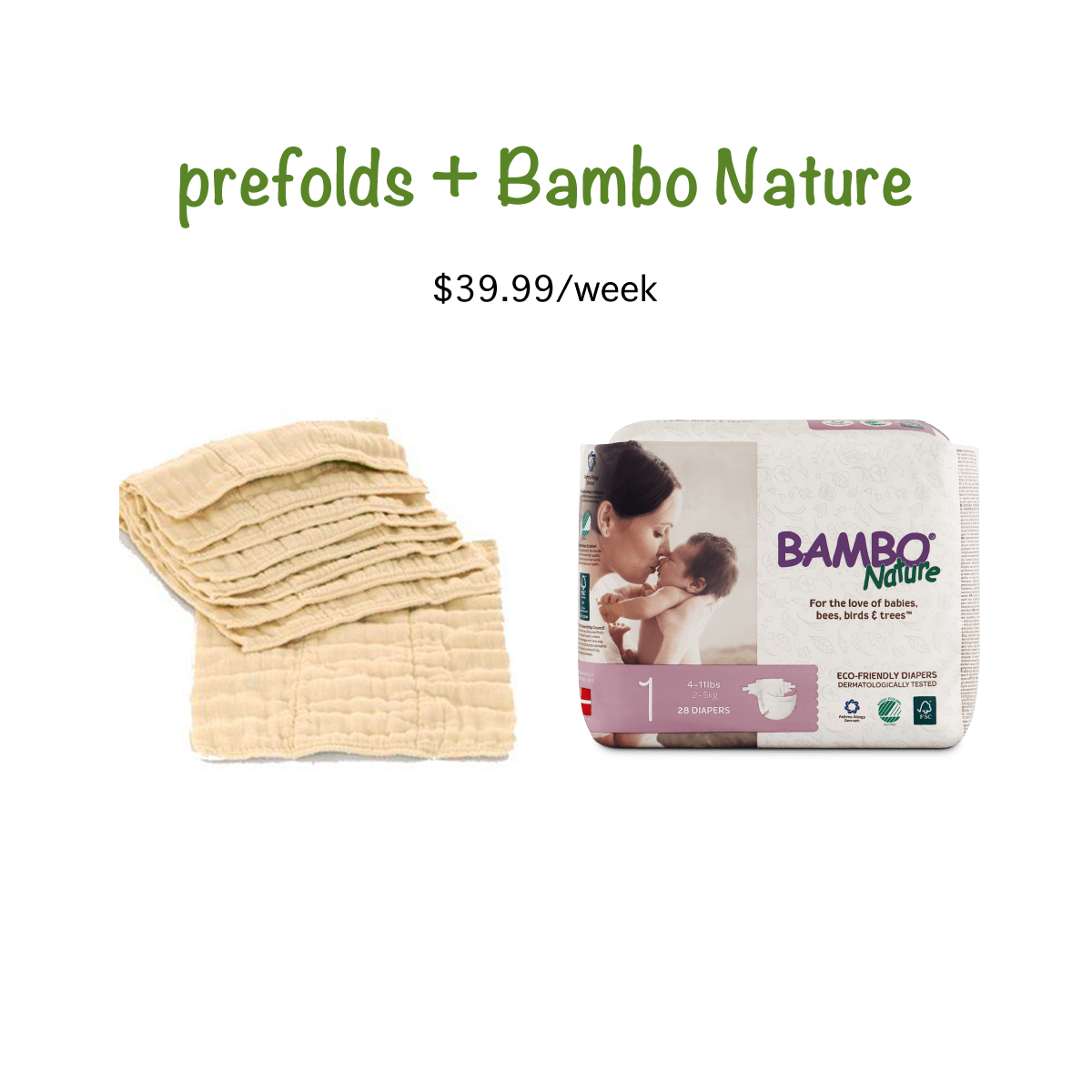 Bambo Nature Paper Disposable and Organic Cotton Prefold Diaper Service - 4  weeks