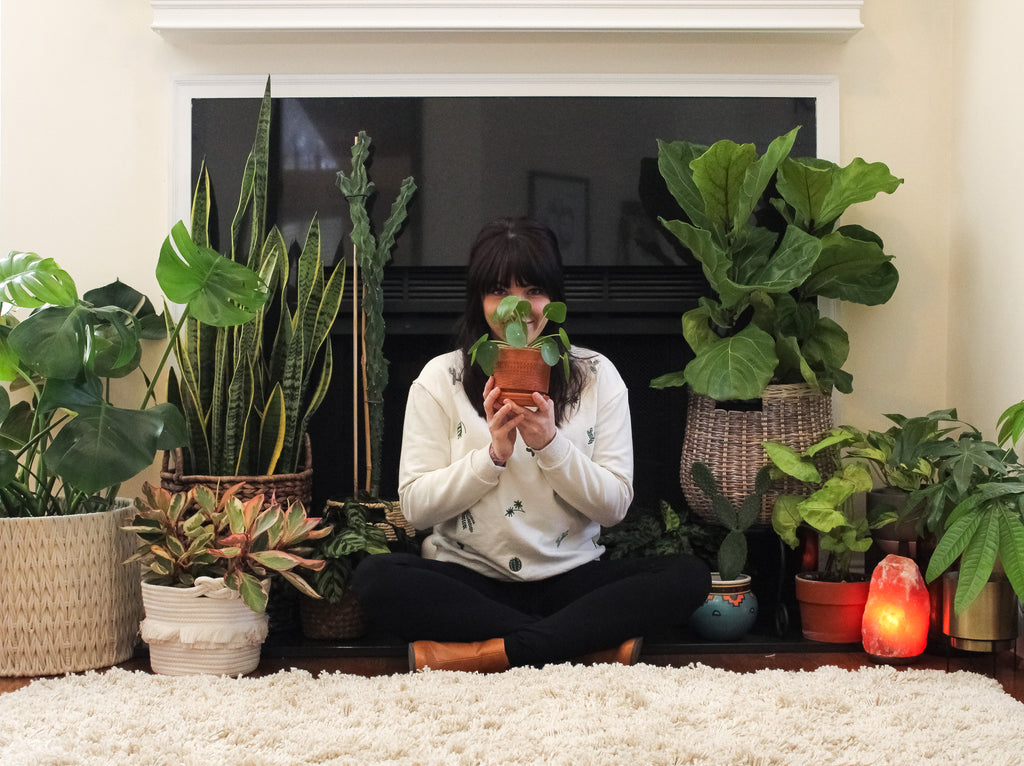 Real People Love Plants: An Interview with Siobhan Rodgers