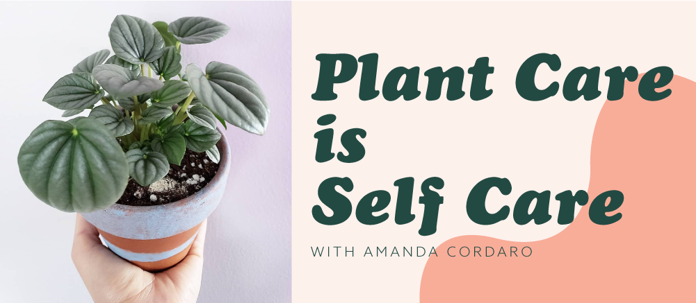 Plant Care is Self Care
