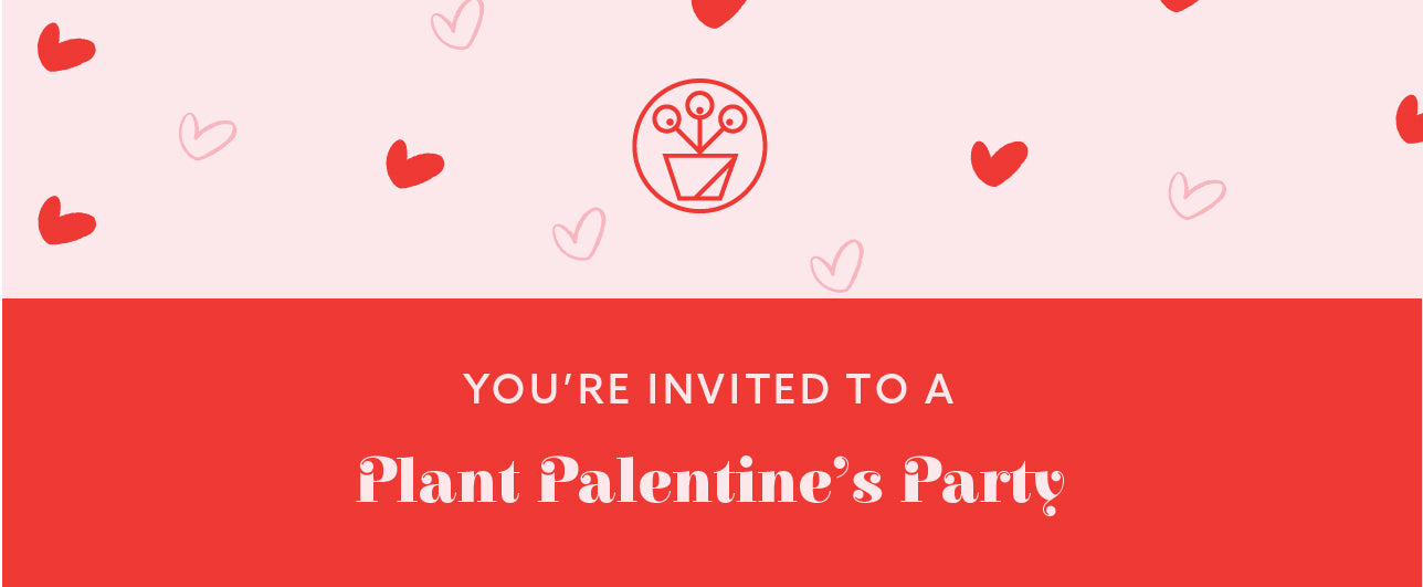 How to Throw the Ultimate Plant Palentine's Party