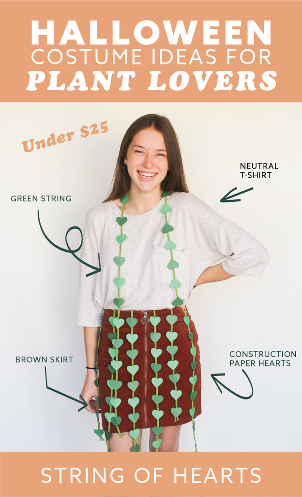 Looking for a quick, cheap, easy houseplant costume for Halloween? This simple tutorial will help you create a String of Hearts costume in an hour or less!