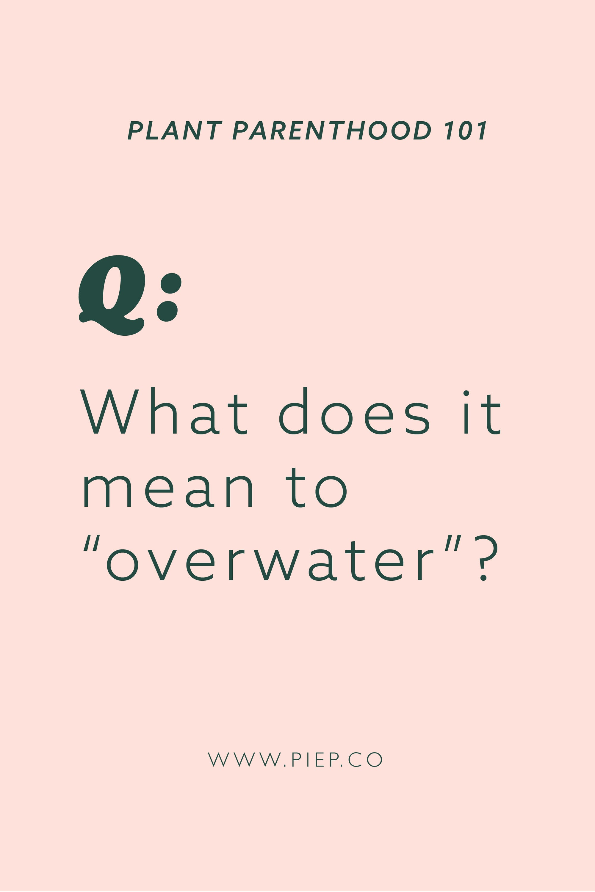 "Customer Q's: What does it mean to ""overwater""?"