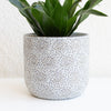 Floral Pattern Planter Small