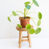 Wooden Planter Stand Small