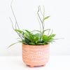 Footed Peach & White Planter Large