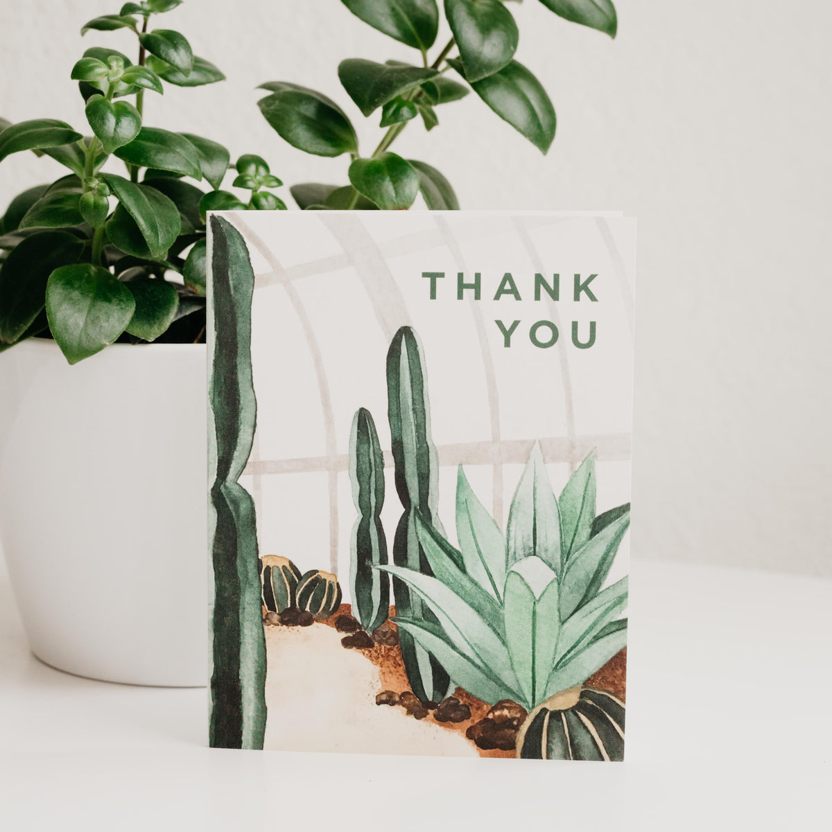 Thank You Cactus Conservatory Greeting Card