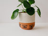 Ojo Eye Planter