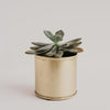 Bryant Gold Brass Planter Small