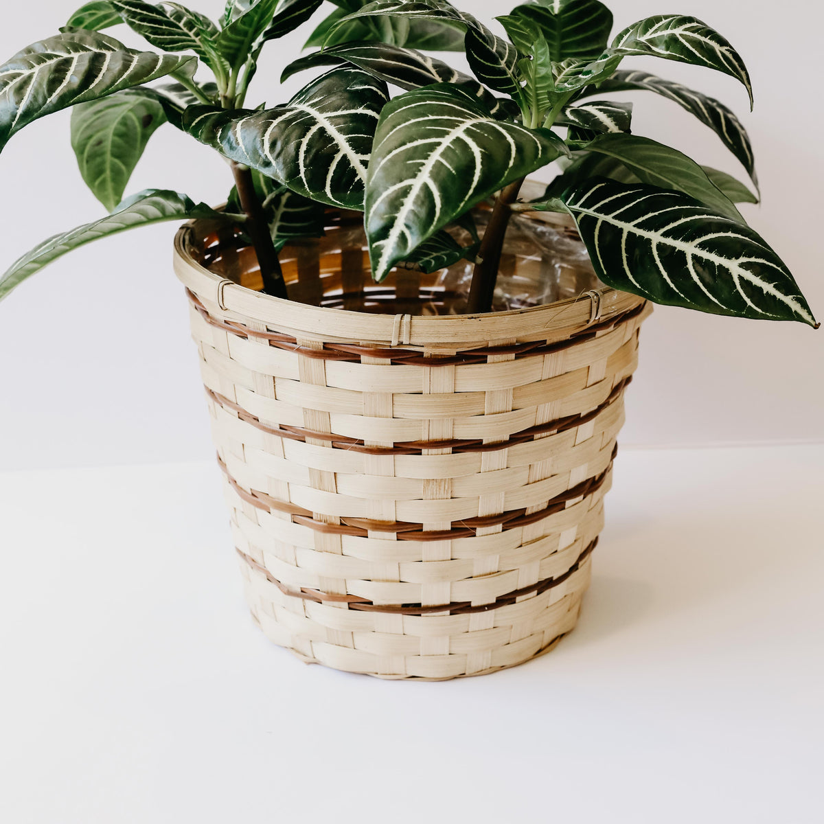 Simona Basket Planter - Large