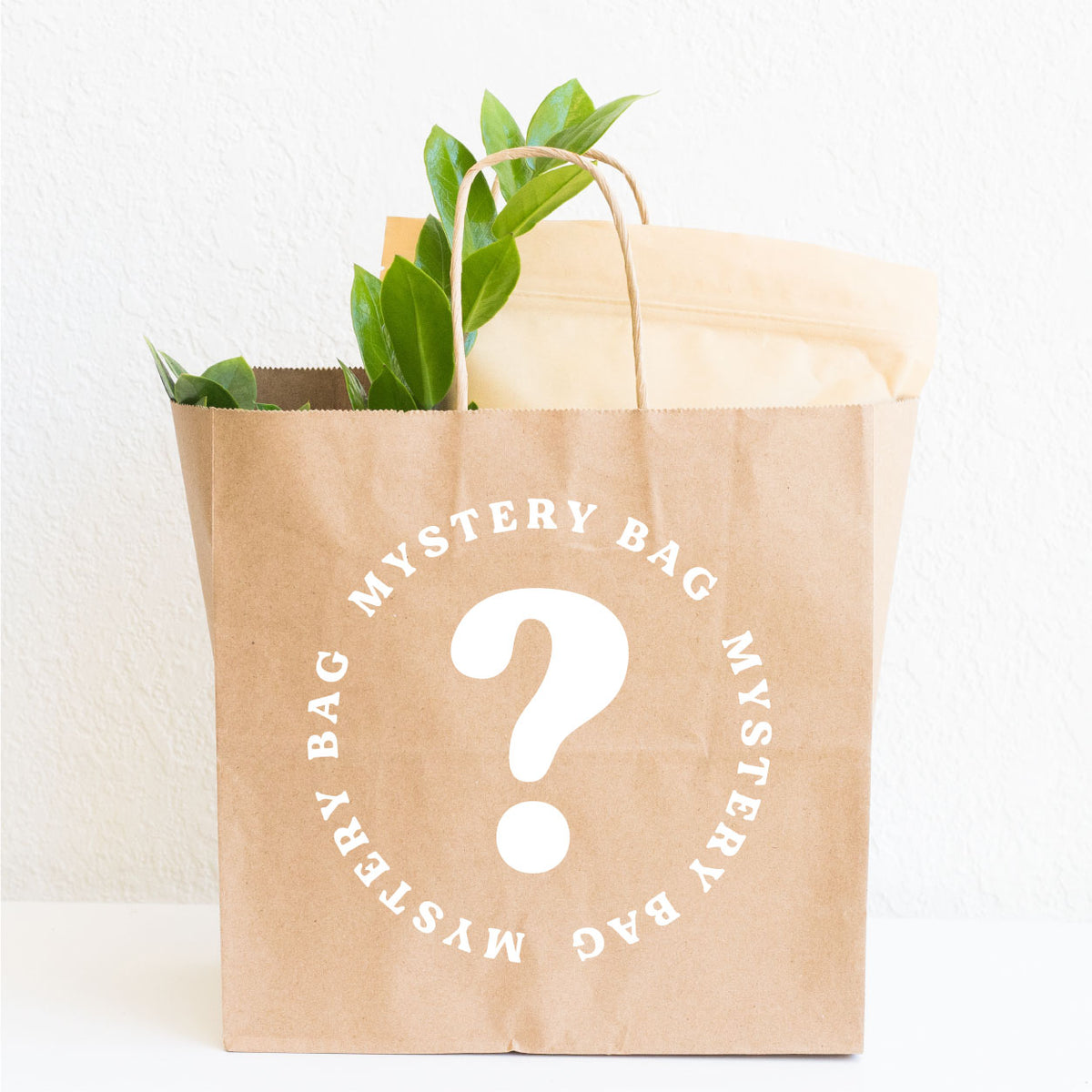 Houseplant Mystery Bag