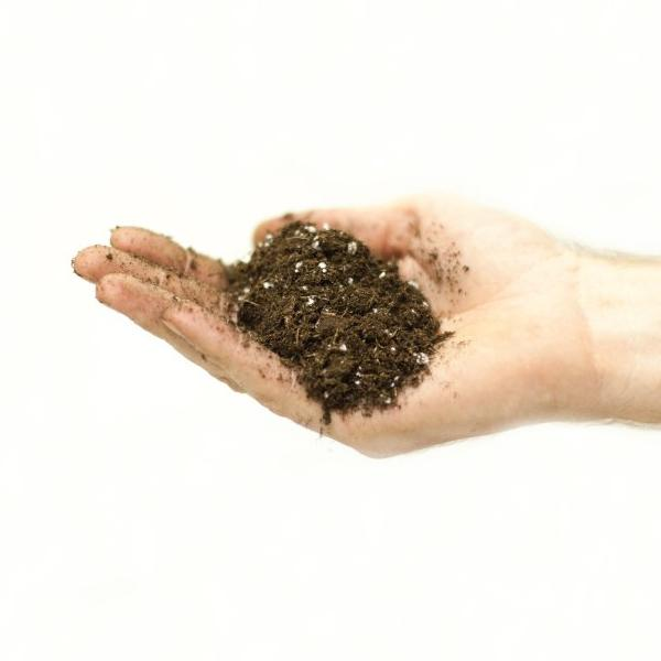 Magic Manure Potting Mix