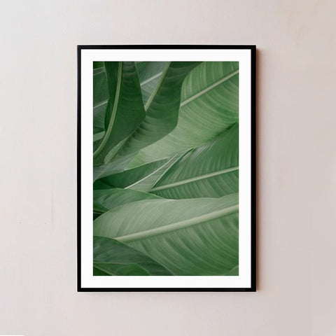 Green Leaf Frame