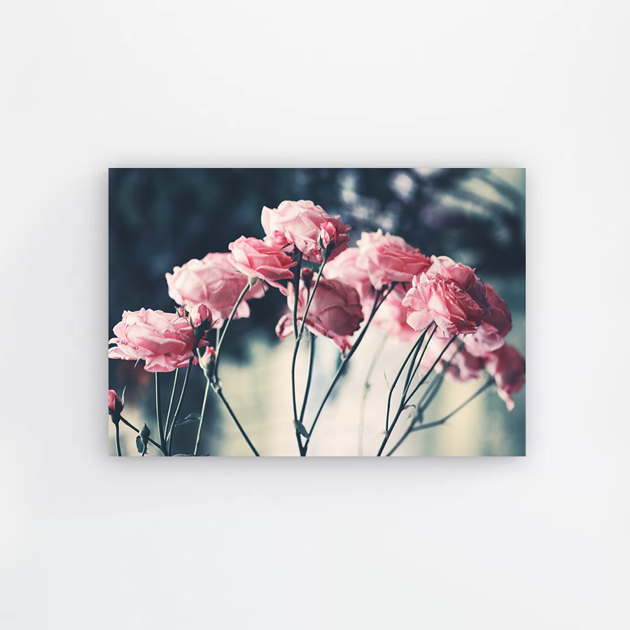 Pink Rose Bouquet Canvas