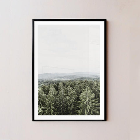 Misty Forest Frame