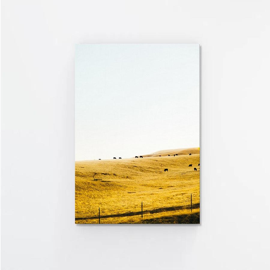 Summer Hill Canvas Print