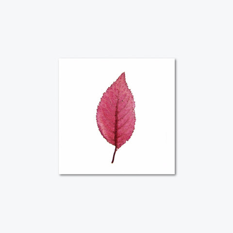 tranh canvas sonice autumn leaf