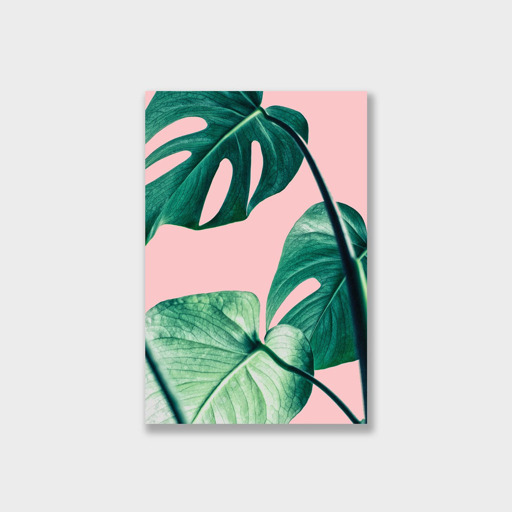 Monstera Leaves Pastel Canvas