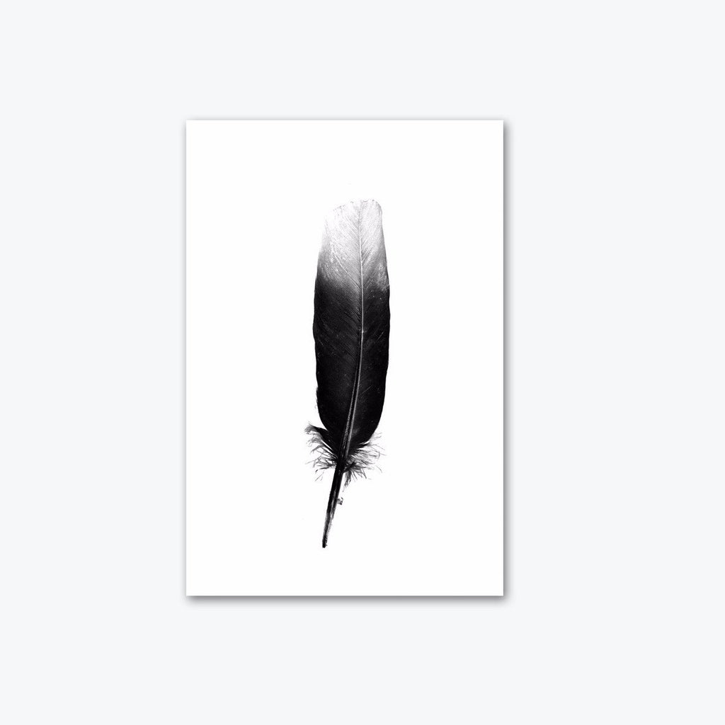 The Feather Atlas Canvas Print