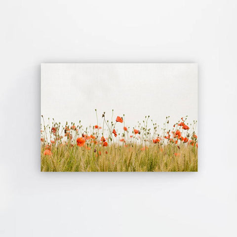 Wild Flower Field Canvas Print