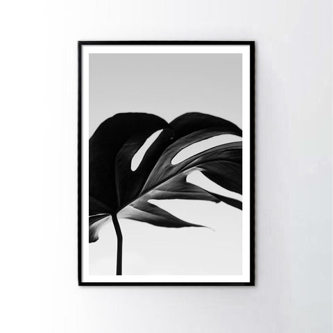 Black & White Monstera Frame