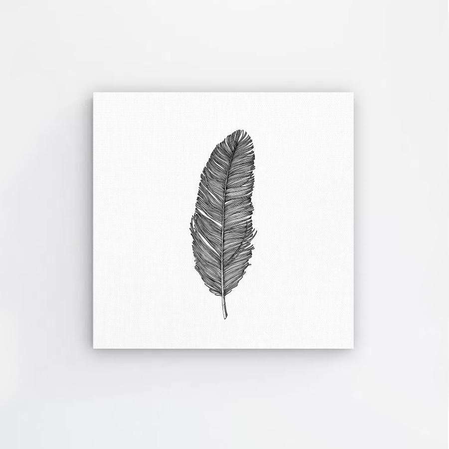 Handrawn Feather Canvas Print