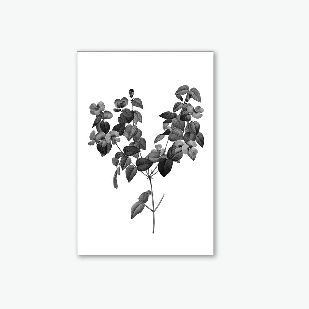 Black tree canvas print