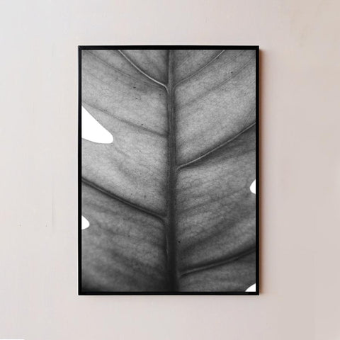 Black and White Minimal Plant VI Frame
