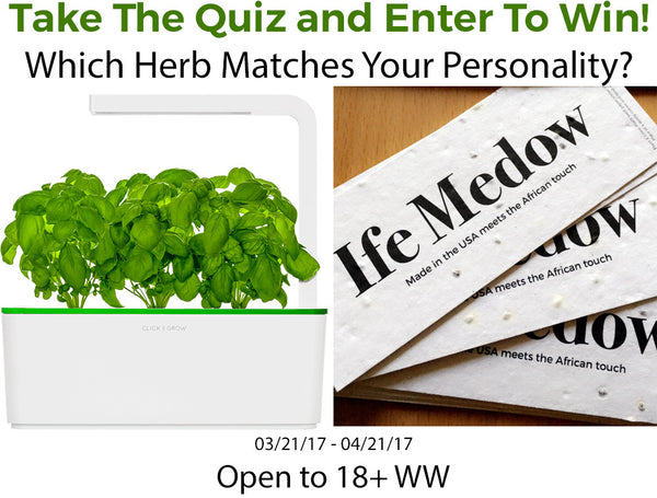 Take The Quiz: Which Herb Should You Grow? +  Indoor Smart Garden Giveaway!
