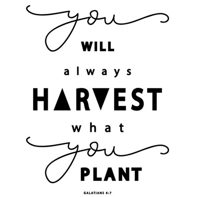 Special Print: You Will Harvest What You Plant
