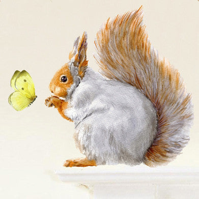 Grey squirrel and butterfly wall sticker 32 x 30cmChocovenyl- Cachette