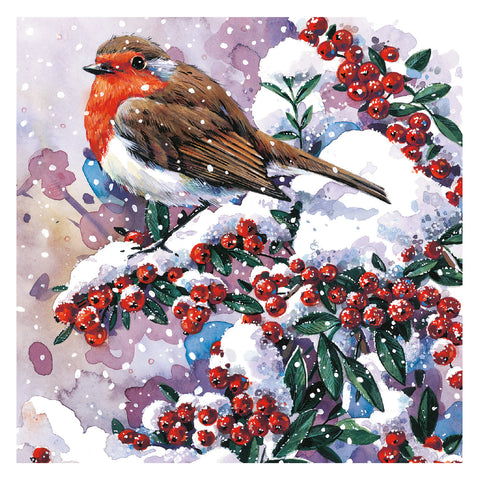 """Winter Robin"" LOROS Christmas Card"