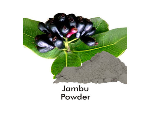 Herbal Hills JAMBUBEEJ PD 100G BOTT - The Diabetic shop