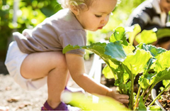 Stay home activity gardening activities with kids