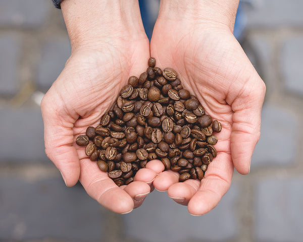 Is Your Coffee Fairtrade?