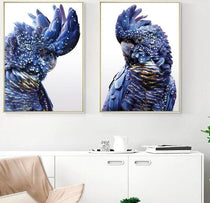 Black Blue Cockatoo Nordic Canvas Prints