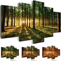 Green Forest Trees Sunset Prints 5 Pieces Natural Landscape