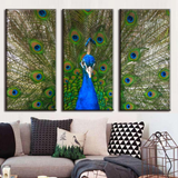 Large Peacock Painting Canvas Print Set