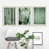 Nordic Style Green Cactus Plants Canvas Prints for Wall
