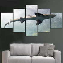 Shark Sealife Canvas Print