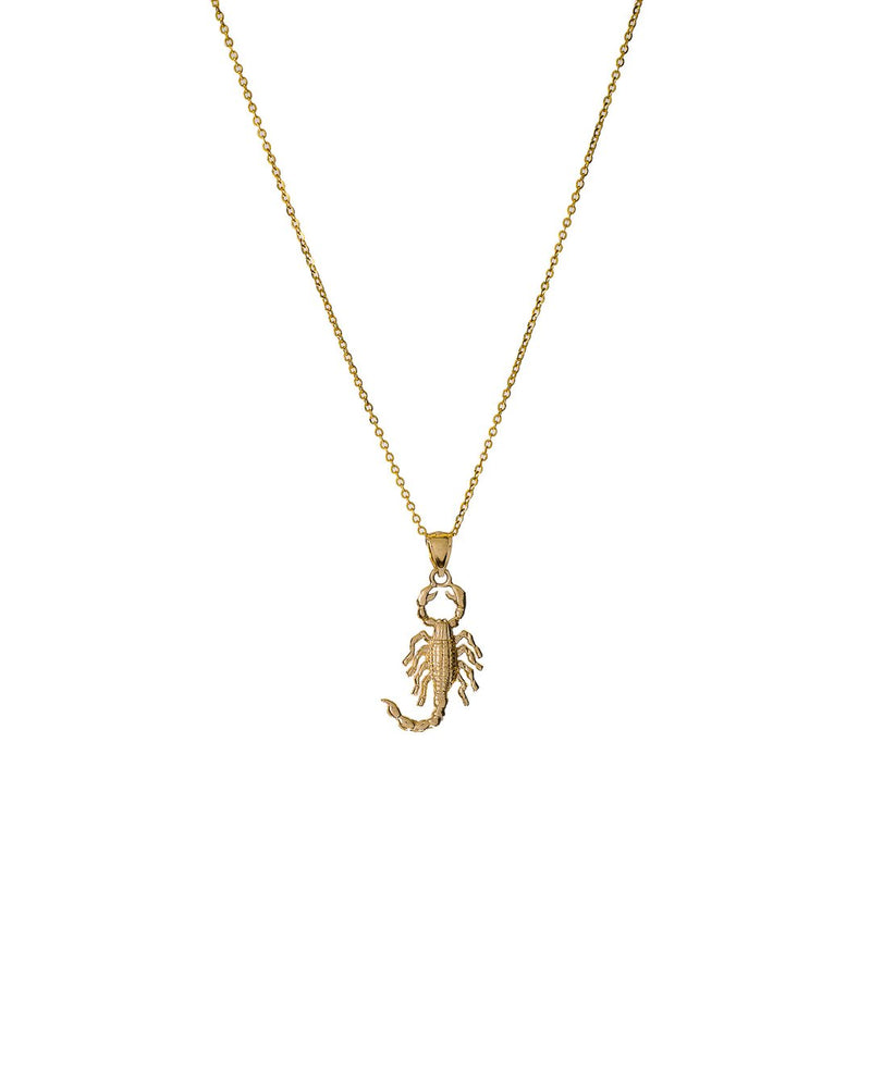 Scorpion Necklace 14k gold - DAYFOURTEEN