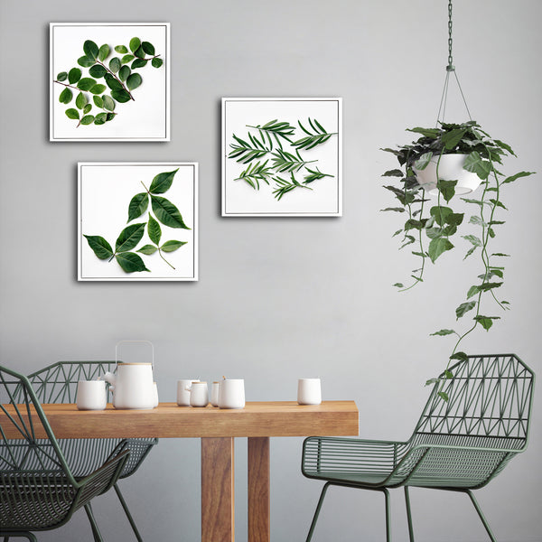 Leaves - 3x Square Art prints, medium