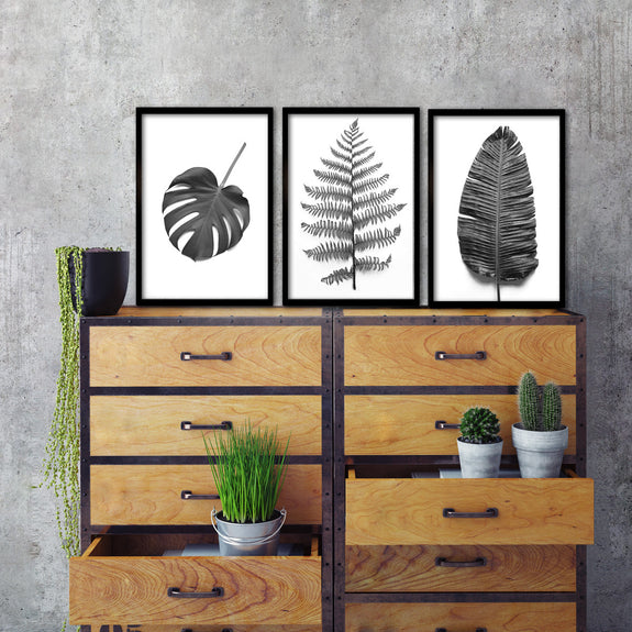 B&W Greenery - 3x A3 Art prints
