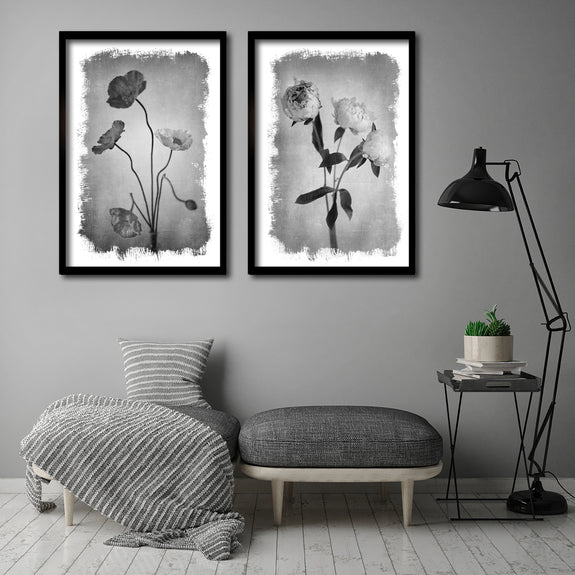Brushed Blooms - 2x Large Art prints, Peonies & Poppies