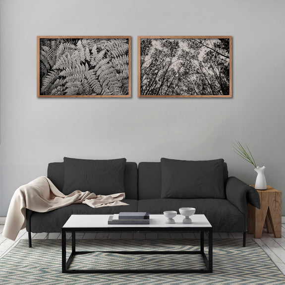 Mono Ferns&Trees - 2x Large Art prints